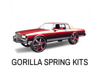 Shop for Gorilla lift spring kits.