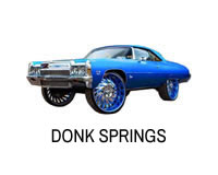 Shop for lift springs for Donks.